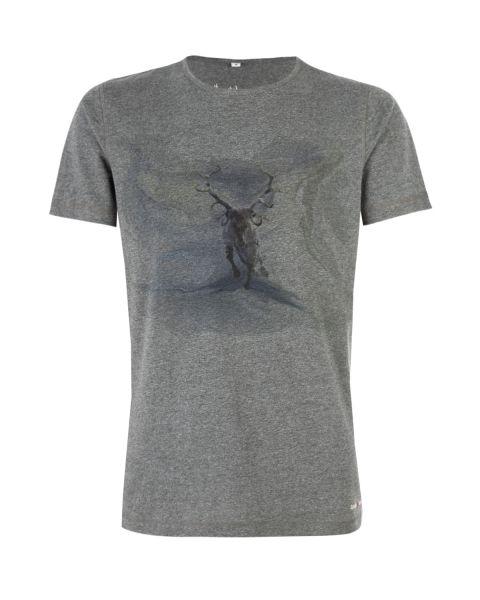 T-Shirt Gucht, grau